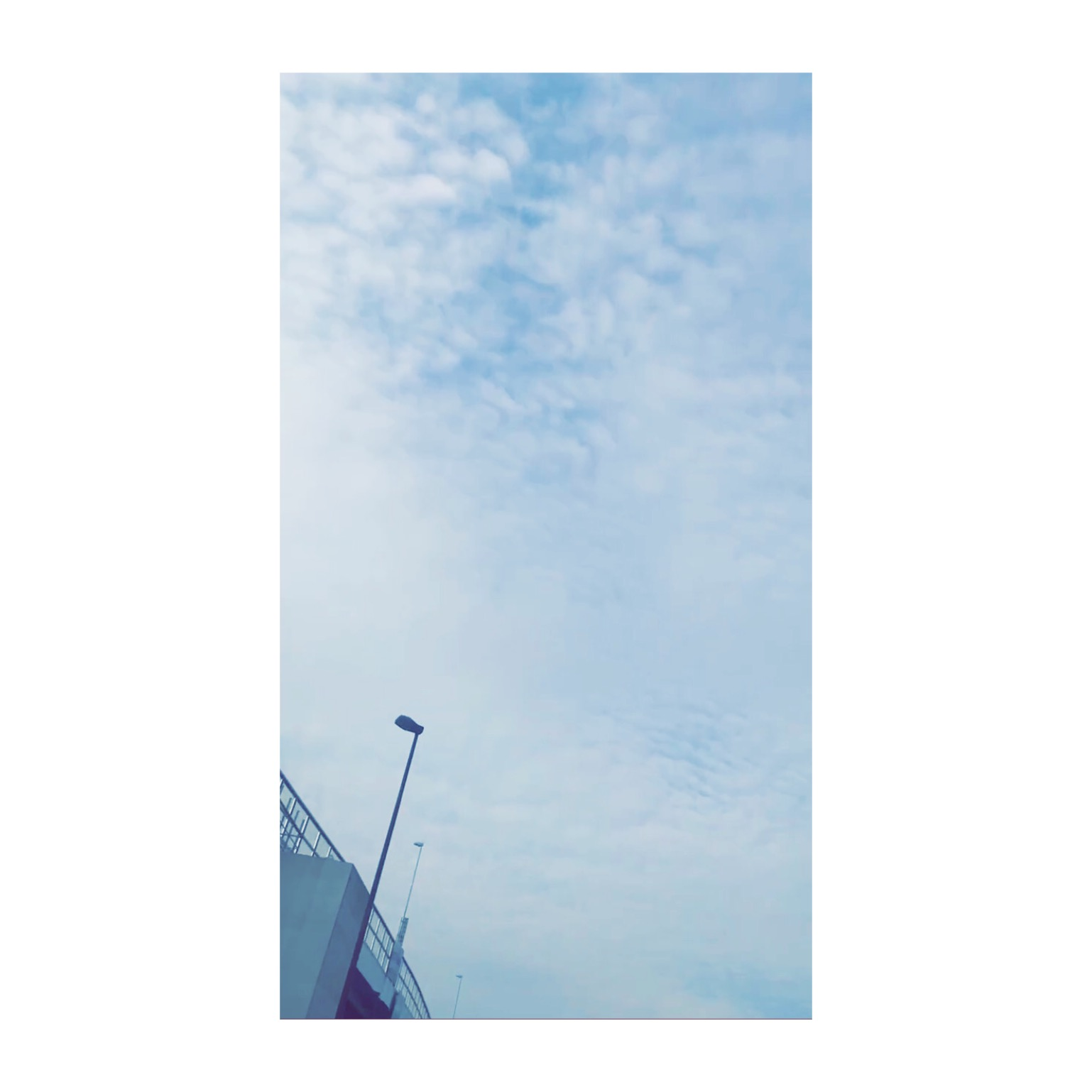 IMG_8802